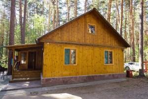 Дом с камином №6